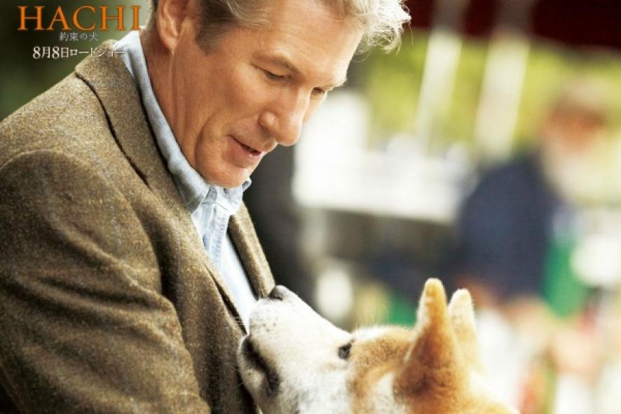 Watch Hachi A Dog S Tale Hd