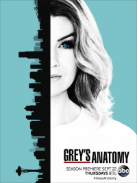 Grey&#39s Anatomy Season 13