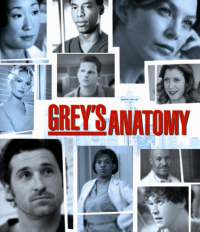 Grey&#39s Anatomy Season 2