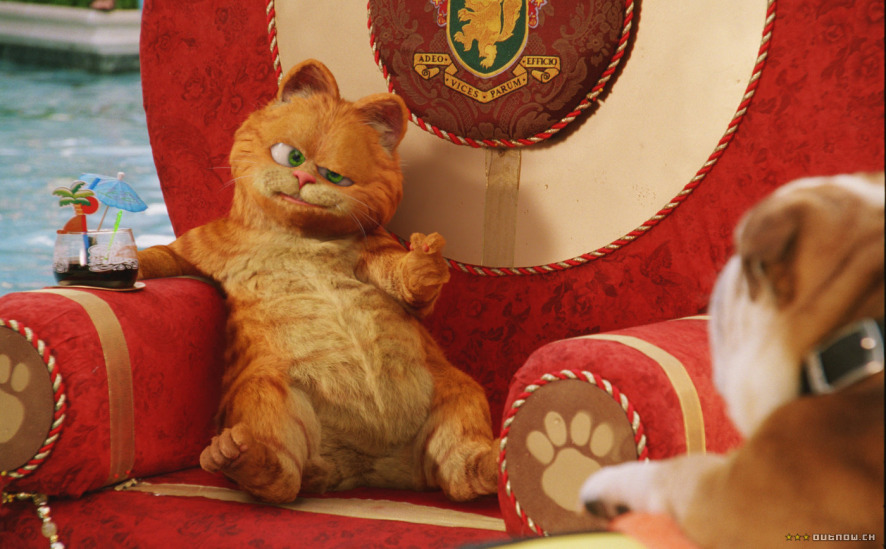 Watch Garfield A Tail Of Two Kitties For Free Online 123movies Com