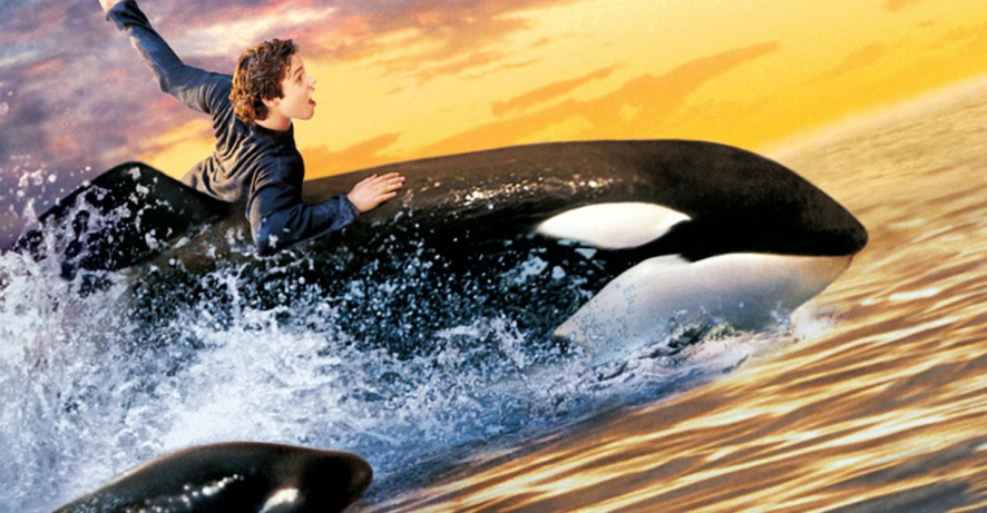 Free Willy 2 The Adventure Home 1995 Movie HD Free Download 720p