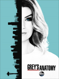 Grey&#39s Anatomy Season 14