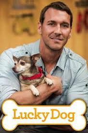 Lucky Dog Season 5
