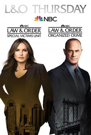 Law & Order Season 23